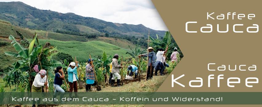 Kaffee aus dem Cauca – Koffein und Widerstand!