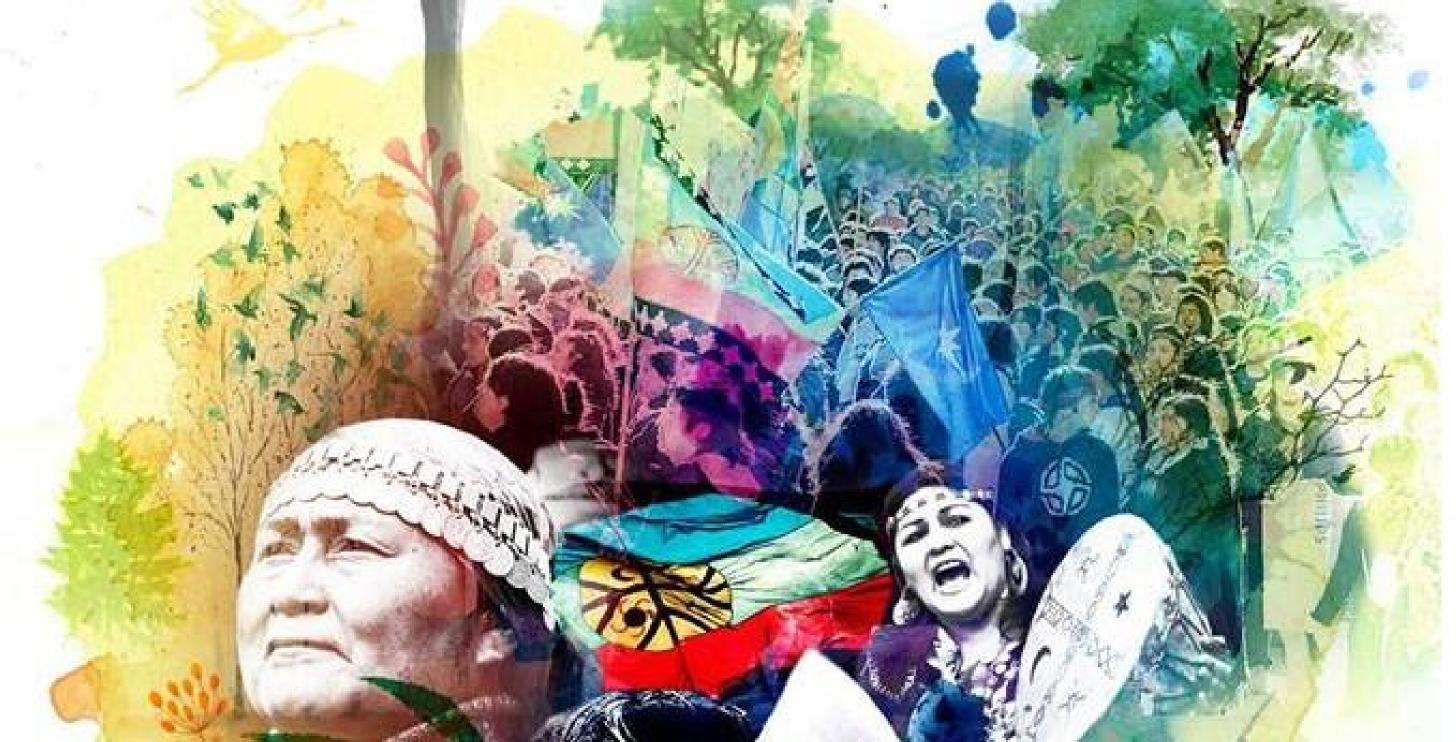 Gespräch mit der Mapuche-Anwältin Natividad Llanquileo
